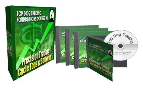 Top Dog Trading Foundations 1 Course