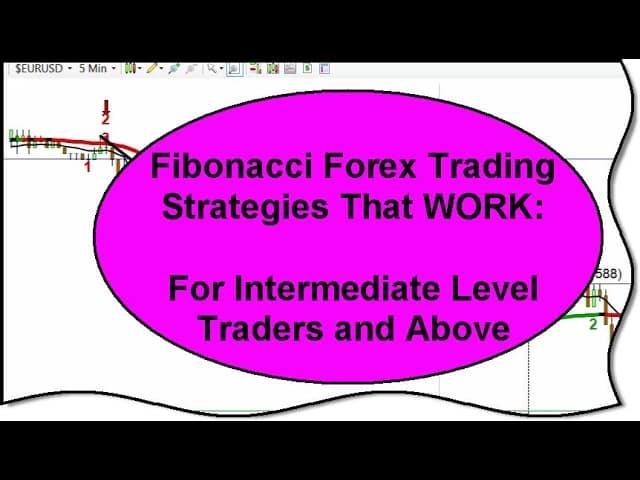 Best forex tutorial video